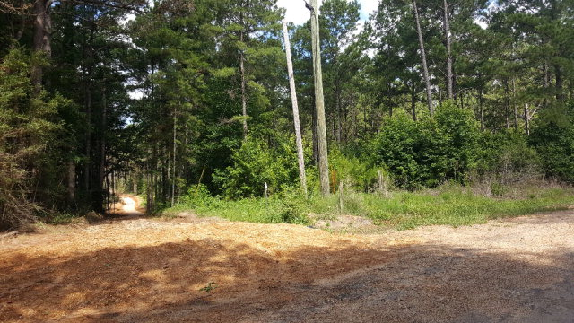 650 Bluff Springs Road, Gloster, MS 39638