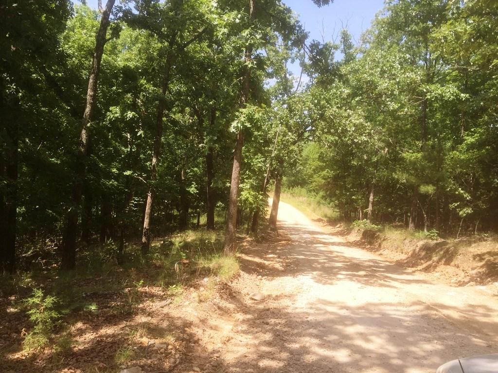 128 acres on Knabenschuh Dr & Ventris RD, Garfield, AR 72732