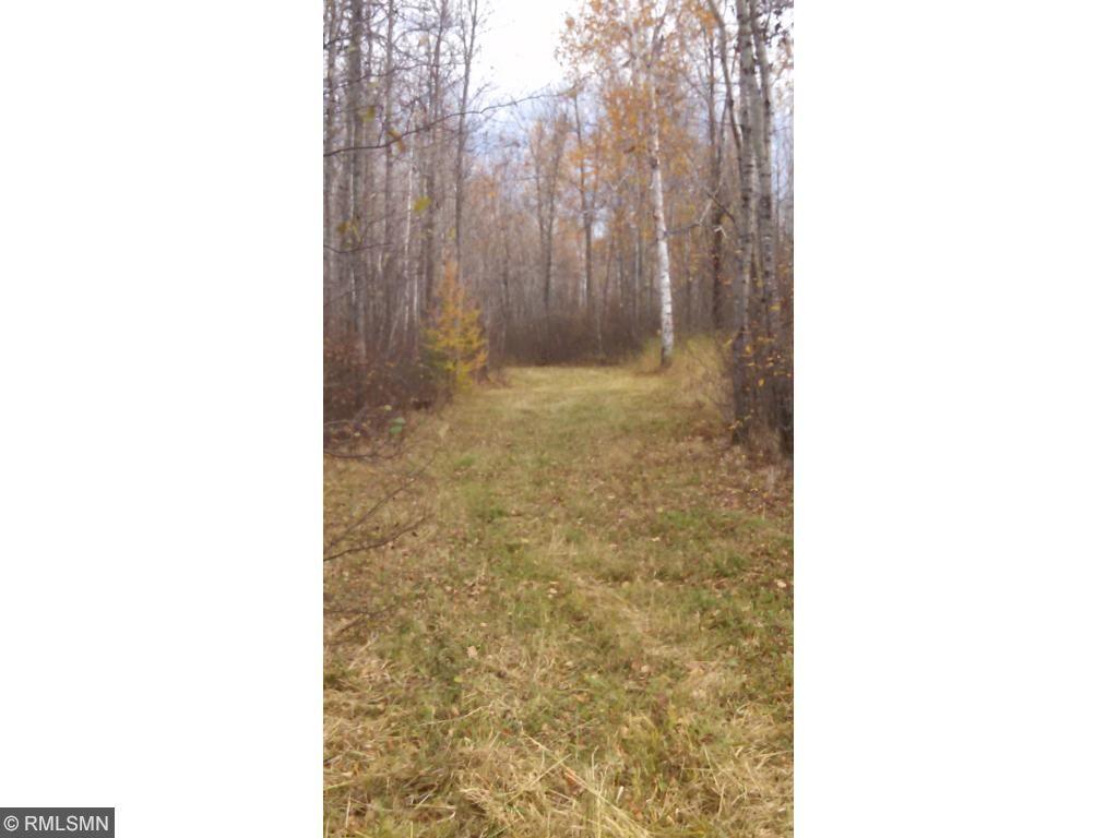 XXX Savanna Road, Floodwood, MN 55736
