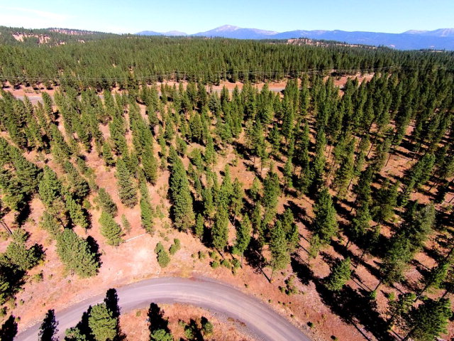 Lot # 12 West Pine Drive, New Meadows, ID 83654
