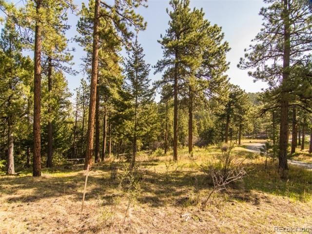 29472 Rainbow Hill Road, Evergreen, CO 80439