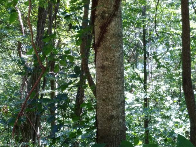 Rocky Top Trail 33, Barnardsville, NC 28709