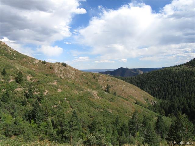 12828 Cottonwood Trail, Littleton, CO 80127