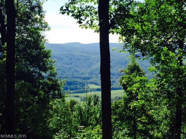 15B Reserve Road 15B, Pisgah Forest, NC 28768