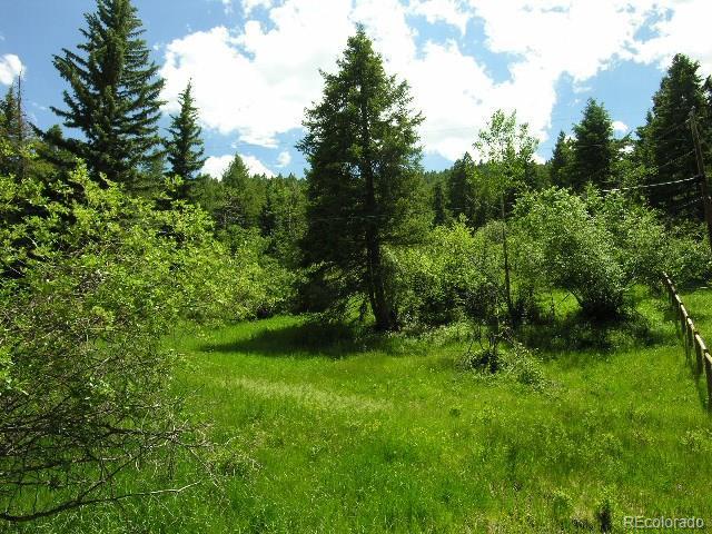 22931 Twin Ponds Trail, Morrison, CO 80465