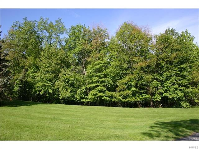 Dogwood Drive, Thompson Ridge, NY 10985