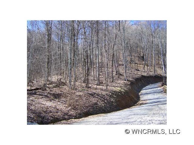 000 Serenity Mountain Road, Waynesville, NC 28786