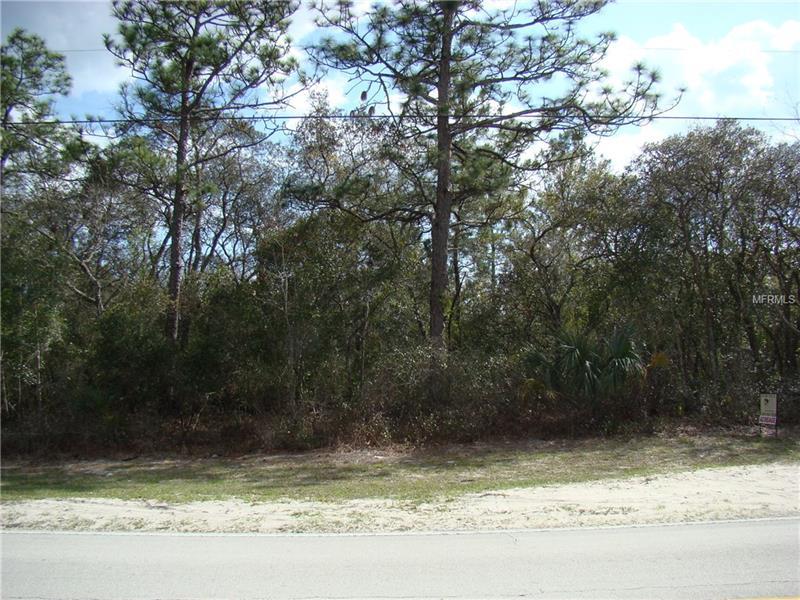CASSADAGA ROAD, LAKE HELEN, FL 32744