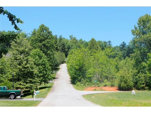 Beautiful lot with gentle terrain. Smaller community in the Crab Creek area with nice views of Pinnacle Mountain.  Near Dupont Forest and Holmes State Park.  Road access on 3 sides for choice of building site.