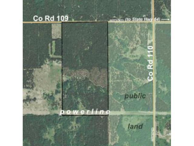 NWNE&SWNE County Road 109, Badoura Twp, MN 56464