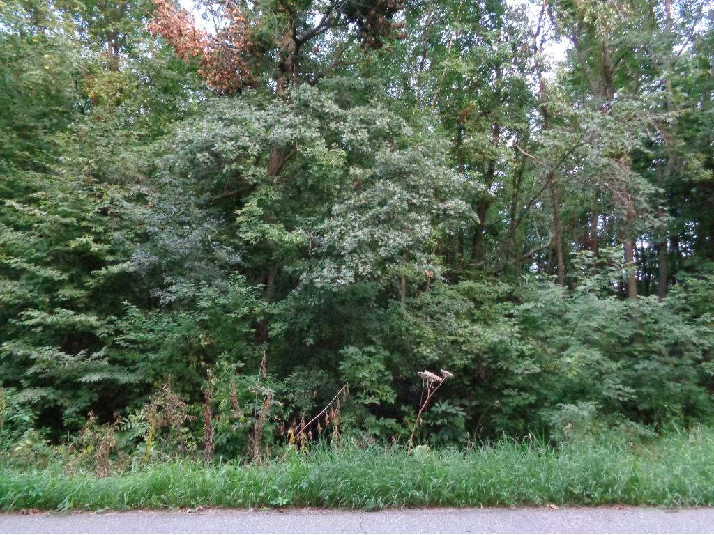 17918 Dove Hill Road, Eden Valley, MN 55329