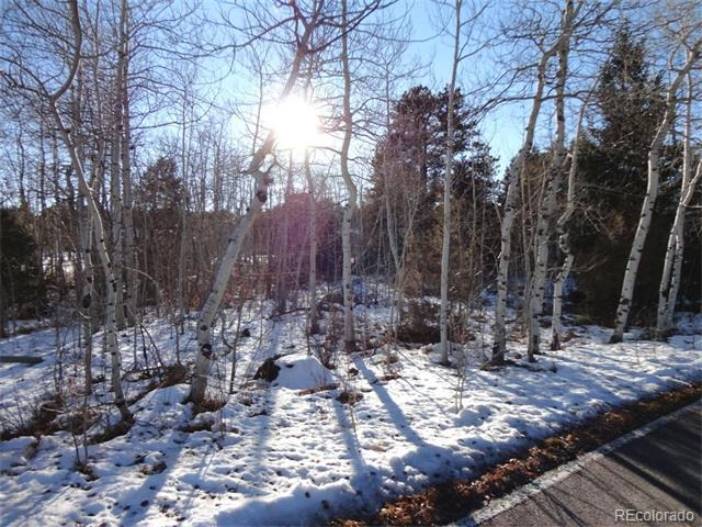 Lot 4 W Fox Acres Drive, Red Feather Lakes, CO 80545