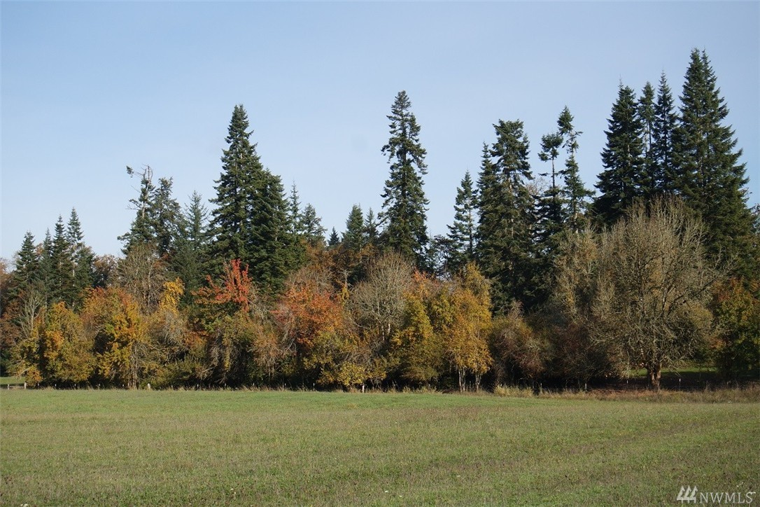 James Rd SW, Rochester, WA 98579