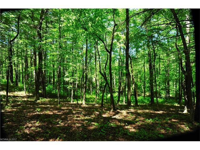 27 Deep Creek Trail 47, Arden, NC 28704
