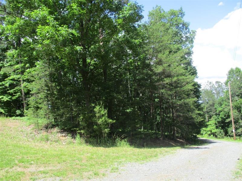 965 Racoon Ridge, Ranger, GA 30701