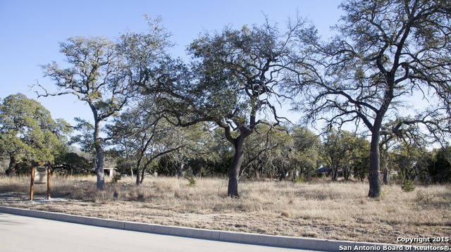 320 Ranch Pass, Fair Oaks Ranch, TX 78015