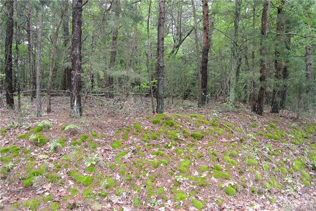 1 AC Lot Island View Road A, Fort Mill, SC 29708