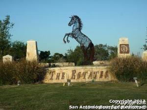 14125 IRON HORSE WAY, Helotes, TX 78023