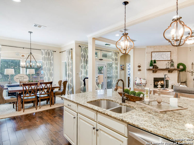 17816 OXFORD MT, Helotes, TX 78023