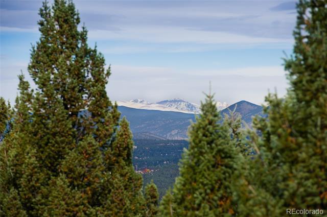 6008 Flat Creek Drive, Evergreen, CO 80439