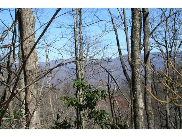 15 Mountain Mint Drive, Swannanoa, NC 28778