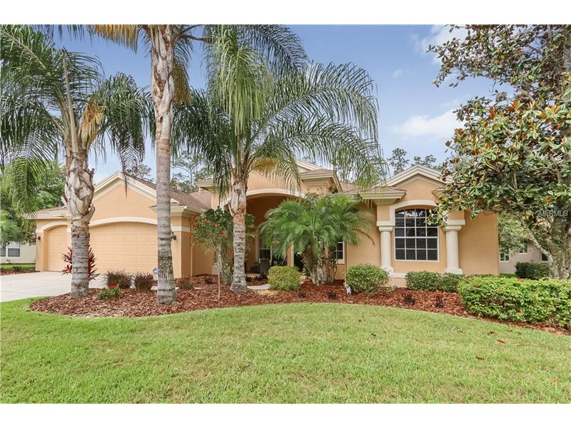 2741 LAKE VALLEY PLACE, WESLEY CHAPEL, FL 33544