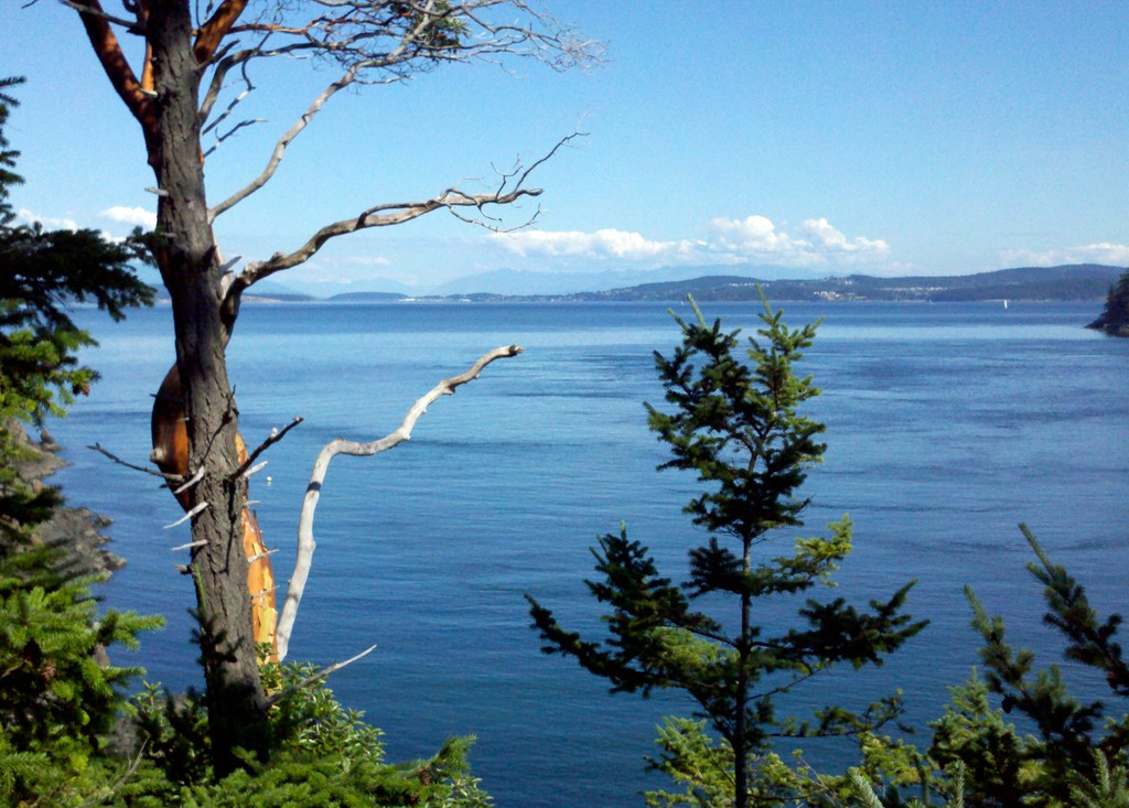 Fauntleroy Point Dr, Decatur Island, WA 98221