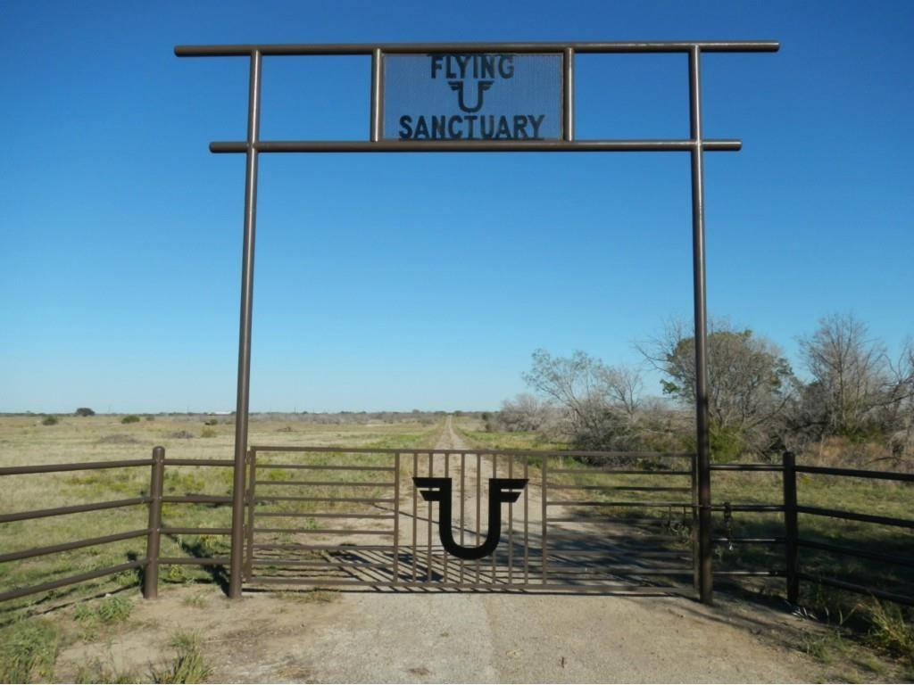 1600 Coyote Trail, Strawn, TX 76475