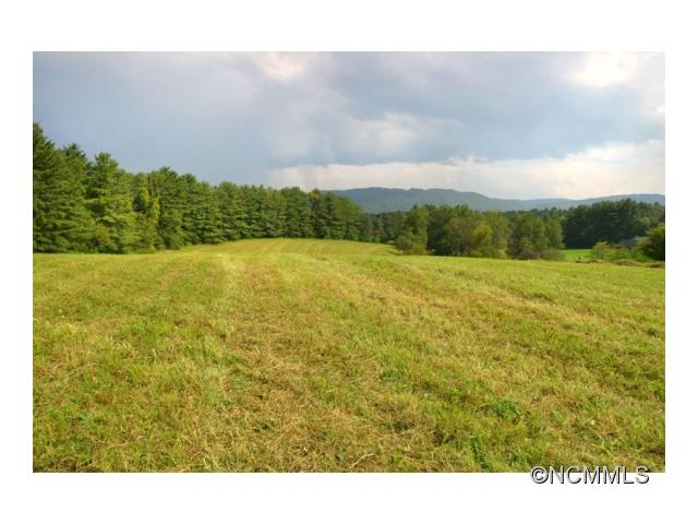 This iconic farm with exceptional long range mountain views features 161 acres on Emma's Grove Road, only 10 minutes from downtown Asheville. The rare large acreage tract includes open pasture land, mature hayfields, 1930s brick farmhouse, rolling terrain with small creek, and large wooded forest. Ideal for country estate, horse farm or custom homesites.