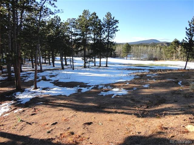 Lot 16 W Fox Acres Drive, Red Feather Lakes, CO 80545