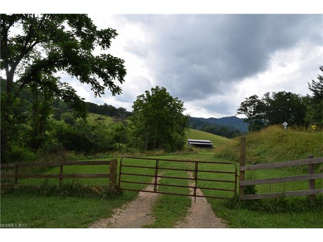 3503 Hyder Mountain Road, Clyde, NC 28721