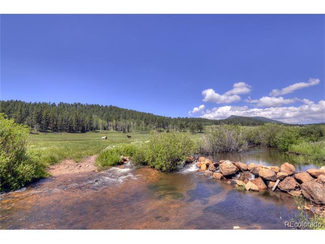 64441 S US Hwy 285, Bailey, CO 80421