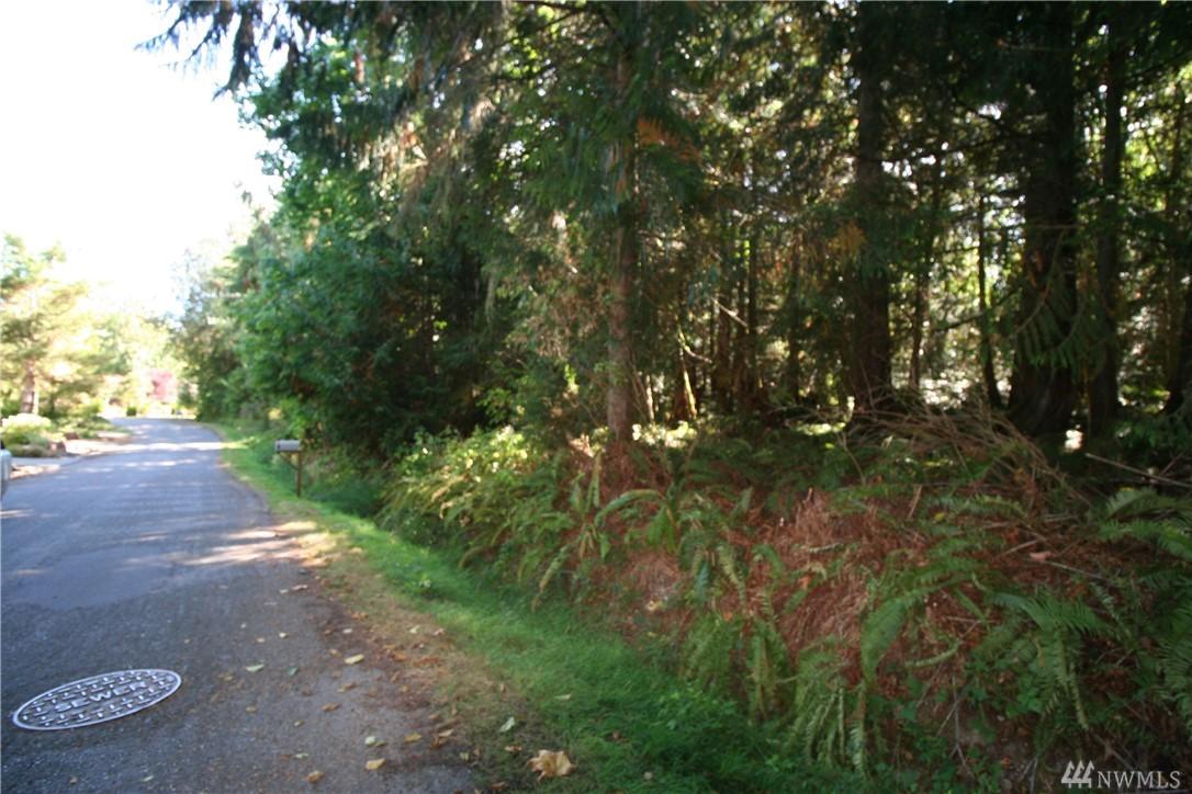 9999 Goliah Lane, Port Ludlow, WA 98365