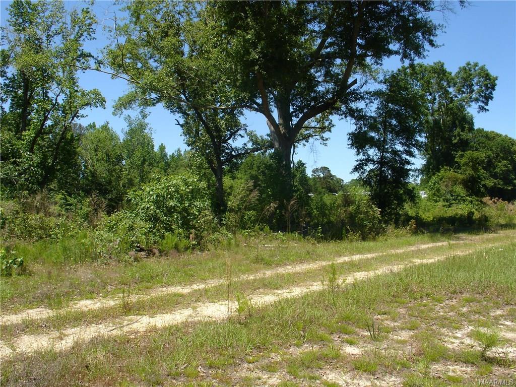 County #14 Road, Smut Eye, AL 36005