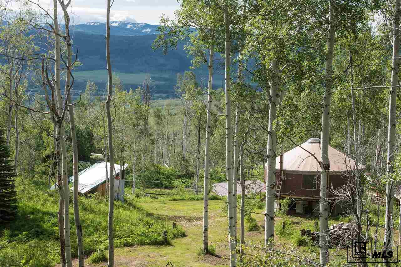 24355 McAlpin Trail, Clark, CO 80428