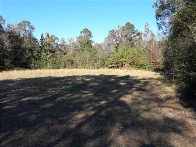 17231 HARTS Lane, Kentwood, LA 70444
