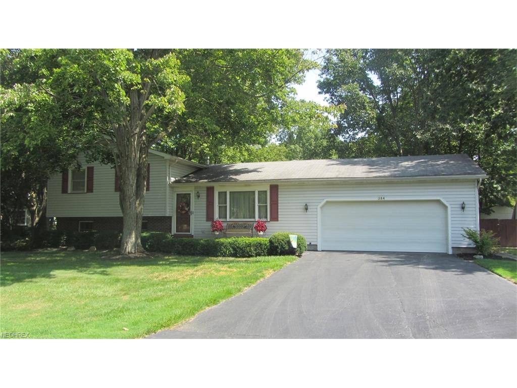 384 Charles Ave, Cortland, OH 44410
