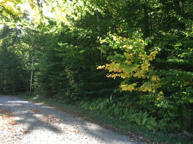 00 Cliff Road, Old Forge, NY 13420
