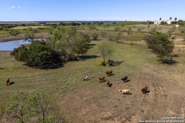 1230 CR 445, Hondo, TX 78861