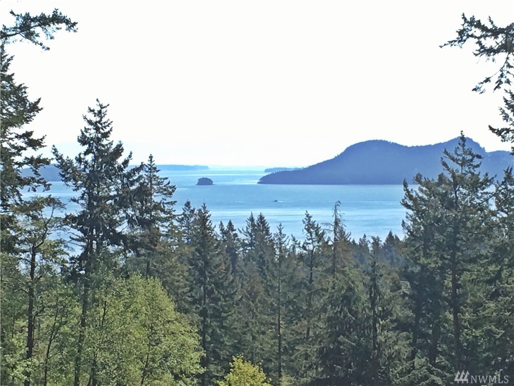 31 Roehl's Hill Rd, Orcas Island, WA 98279