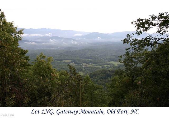 9999 Nicey Gap Drive 1+2NG, Old Fort, NC 28762