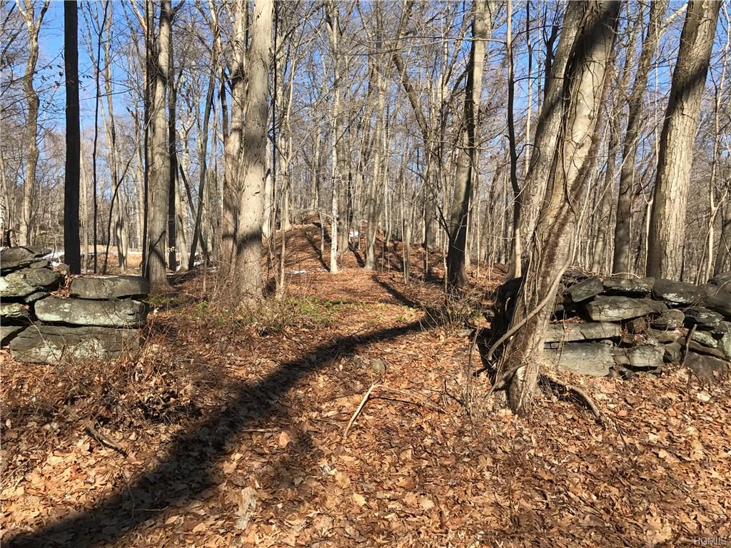 Prestigious YALE FARM - with Byram Hills schools. Wooded setting with a level building site and recreation area nestled among rock outcroppings, affording privacy and a dramatic backdrop for landscaping. Preliminary plan available for a 5860 sqft 4 BR/4 Bth colonial. Potential pool site.