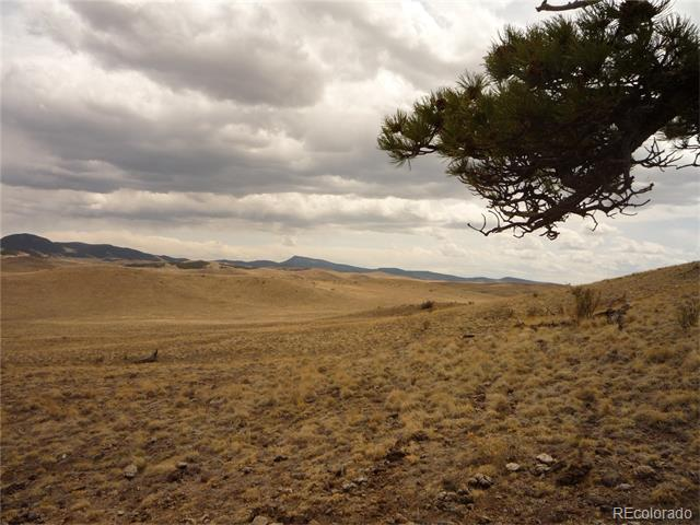 """Home, home on the range - where the deer and the antelope play...""  Just like the song this property is your home away from home on the high plains with excellent views of the mountains.  Peace and quiet away from the hustle/bustle of the city and you might see some buffalo now and then.  Build your dream home or just use this nearly five acre parcel for camping and stargazing.  Located close to Spinney and Elevenmile Reservoirs for the fisherman/woman in your life."