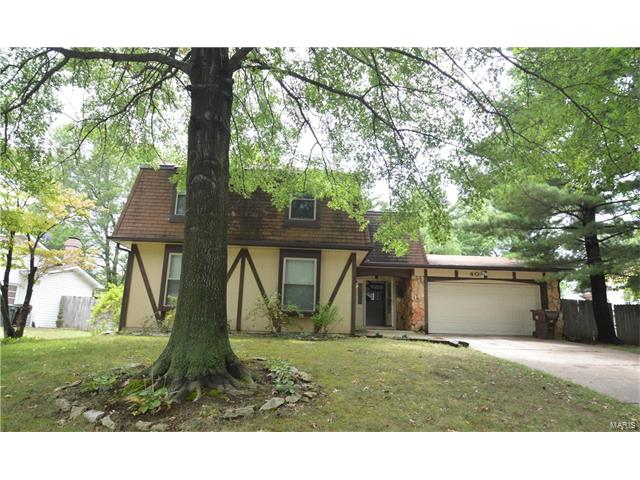 40 Lost Dutchman Drive, St Peters, MO 63376