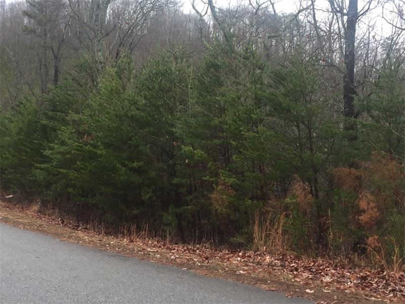 Fantastic mountain lot - right in town! Great views, great trees, great neighborhood.1.08 acres with power and water. Ready to build. Very close to Walmart and downtown shopping and restaurants.