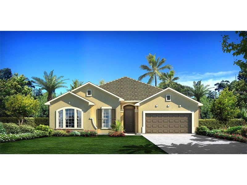 9511 ANTILLES DRIVE, SEMINOLE, FL 33776