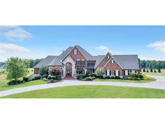30 Wynnston Woods Court, Wentzville, MO 63385