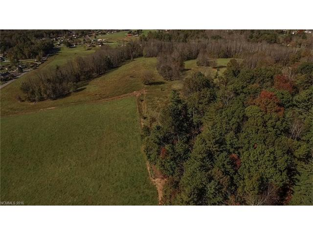 One of the last large scale development tracts left in the AVL region. Gentle to rolling pasture, moderate terrain w/panoramic views & French Broad River frontage make the perfect place for a res development. Located within the triangle of Asheville, Brevard, and Hendersonville-it combines perfect on-site lifestyle community & amenities w/easy access to healthcare, city services & vibrant arts communities. Master plan fro a dev. that was previously considered is avail. Add'l acreage avail.