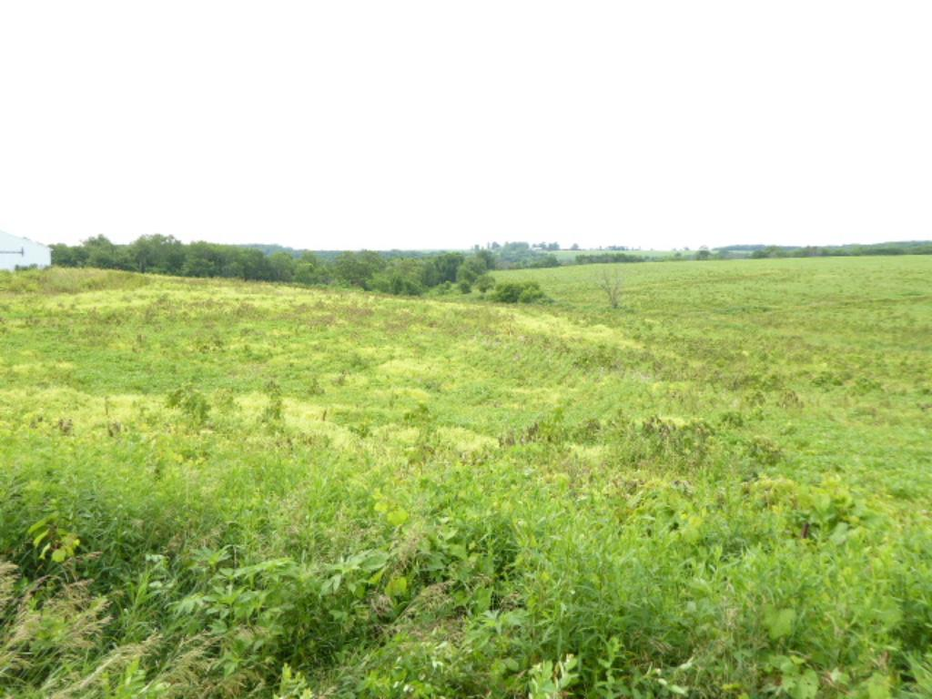 34.38 acres County Road Z, Arkansaw, WI 54721