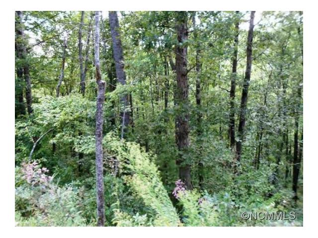 Nice sized lot in a great subdivision only 10 minutes from downtown Asheville. There is underground fiber optic cable installed and 4 homes are built or are being built! Paved roads, city water and in a perfect location. Come see!